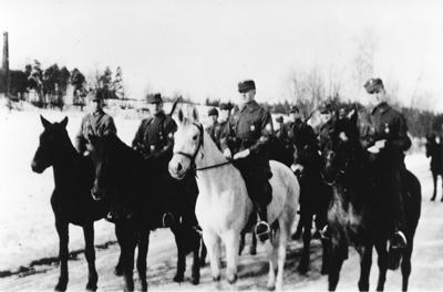 A515 27 Helsingin ratsuvakisuojeluskunta Pokki Nordstrom Gro